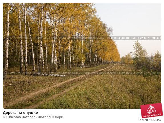 Дорога на опушке, фото № 172457, снято 19 октября 2007 г. (c) Вячеслав Потапов / Фотобанк Лори