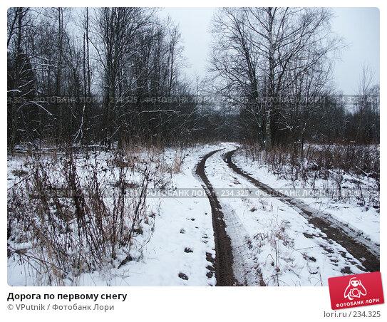 Дорога по первому снегу, фото № 234325, снято 14 января 2007 г. (c) VPutnik / Фотобанк Лори