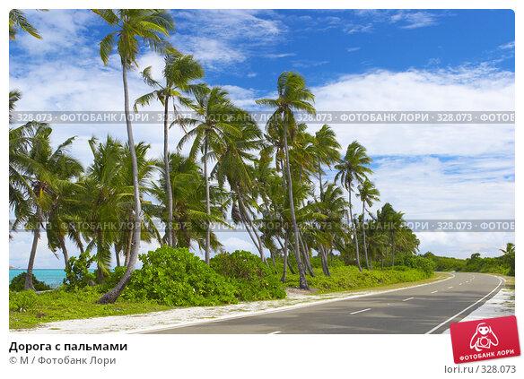 Дорога с пальмами, фото № 328073, снято 23 августа 2017 г. (c) Михаил / Фотобанк Лори