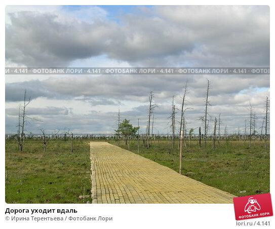 Дорога уходит вдаль, эксклюзивное фото № 4141, снято 21 августа 2004 г. (c) Ирина Терентьева / Фотобанк Лори