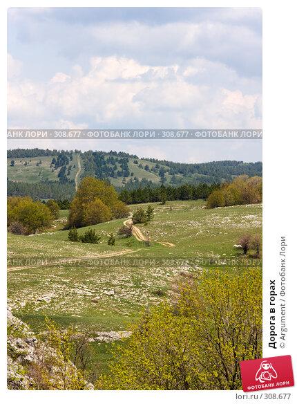 Дорога в горах, фото № 308677, снято 30 апреля 2008 г. (c) Argument / Фотобанк Лори