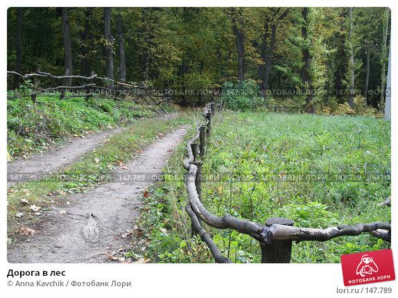 Дорога в лес, фото № 147789, снято 30 сентября 2006 г. (c) Anna Kavchik / Фотобанк Лори