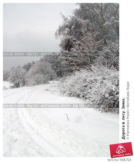 Дорога в  лесу. Зима., фото № 104721, снято 27 марта 2017 г. (c) Parmenov Pavel / Фотобанк Лори