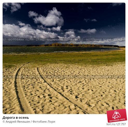 Дорога в осень, фото № 27757, снято 4 декабря 2016 г. (c) Андрей Явнашан / Фотобанк Лори