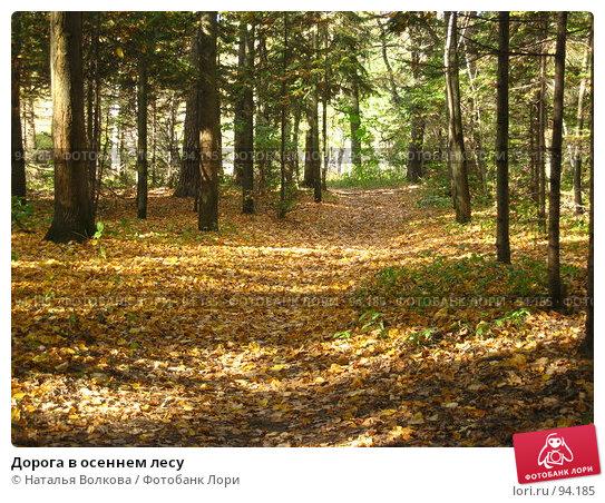 Дорога в осеннем лесу, эксклюзивное фото № 94185, снято 2 октября 2007 г. (c) Наталья Волкова / Фотобанк Лори