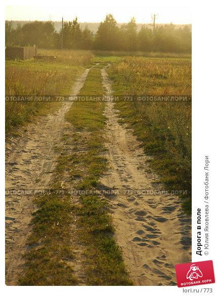Дорога в поле, фото № 773, снято 5 августа 2005 г. (c) Юлия Яковлева / Фотобанк Лори