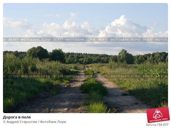Купить «Дорога в поле», фото № 59977, снято 8 июля 2007 г. (c) Андрей Старостин / Фотобанк Лори