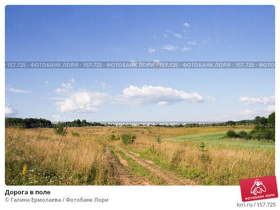 Дорога в поле, фото № 157725, снято 6 августа 2007 г. (c) Галина Ермолаева / Фотобанк Лори
