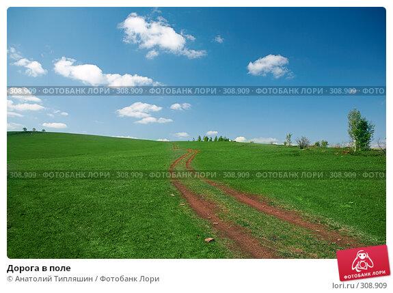Купить «Дорога в поле», фото № 308909, снято 22 мая 2008 г. (c) Анатолий Типляшин / Фотобанк Лори