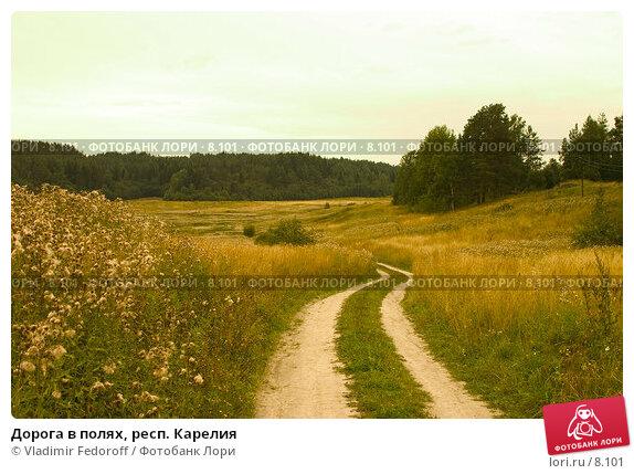 Дорога в полях, респ. Карелия, фото № 8101, снято 24 марта 2017 г. (c) Vladimir Fedoroff / Фотобанк Лори
