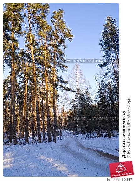 Купить «Дорога в зимнем лесу», фото № 169137, снято 31 декабря 2007 г. (c) Борис Панасюк / Фотобанк Лори