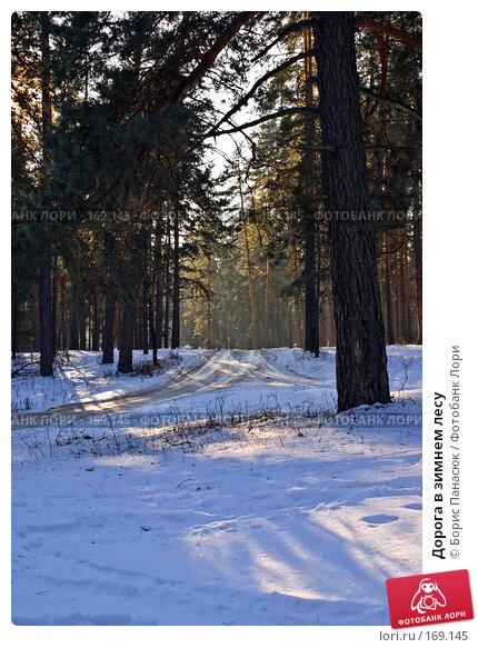 Дорога в зимнем лесу, фото № 169145, снято 31 декабря 2007 г. (c) Борис Панасюк / Фотобанк Лори