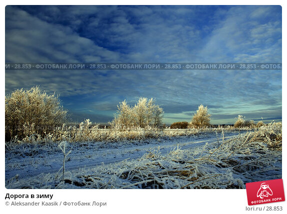 Дорога в зиму, фото № 28853, снято 23 июня 2017 г. (c) Aleksander Kaasik / Фотобанк Лори