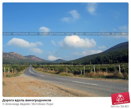 Купить «Дорога вдоль виноградников», фото № 29421, снято 24 сентября 2004 г. (c) Александр Авдеев / Фотобанк Лори