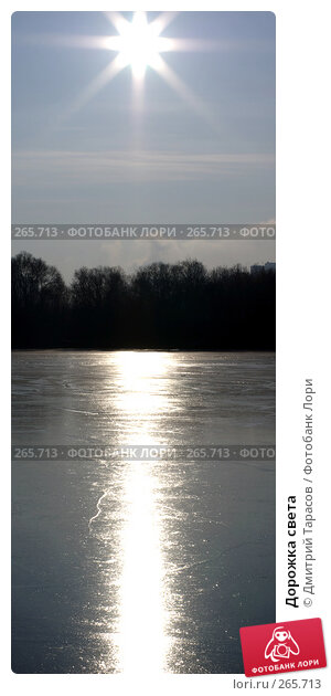 Дорожка света, фото № 265713, снято 1 января 2008 г. (c) Дмитрий Тарасов / Фотобанк Лори