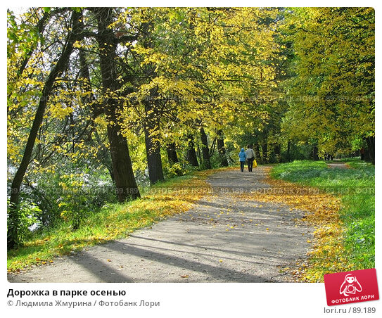 Дорожка в парке осенью, фото № 89189, снято 26 февраля 2017 г. (c) Людмила Жмурина / Фотобанк Лори