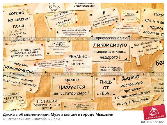 Доска с объявлениями. Музей мыши в городе Мышкин, фото № 186685, снято 2 января 2008 г. (c) Parmenov Pavel / Фотобанк Лори