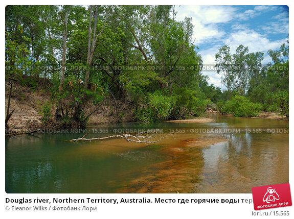 Купить «Douglas river, Northern Territory, Australia. Место где горячие воды термальных источников смешиваются с прохладной водой реки.», фото № 15565, снято 8 января 2007 г. (c) Eleanor Wilks / Фотобанк Лори