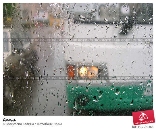 Дождь, фото № 78365, снято 8 сентября 2006 г. (c) Моисеева Галина / Фотобанк Лори