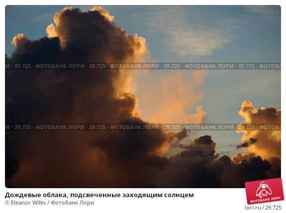 Дождевые облака, подсвеченные заходящим солнцем, фото № 29725, снято 25 апреля 2007 г. (c) Eleanor Wilks / Фотобанк Лори