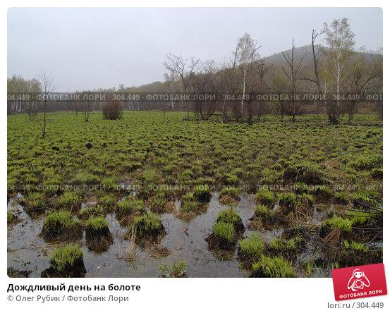 Дождливый день на болоте, фото № 304449, снято 27 апреля 2008 г. (c) Олег Рубик / Фотобанк Лори
