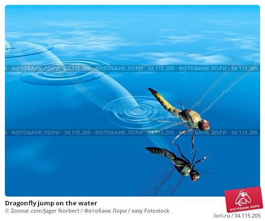 Купить «Dragonfly jump on the water», фото № 34115205, снято 11 июля 2020 г. (c) easy Fotostock / Фотобанк Лори