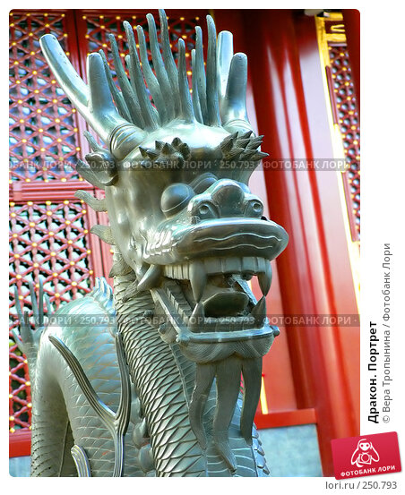 Купить «Дракон. Портрет», фото № 250793, снято 22 апреля 2018 г. (c) Вера Тропынина / Фотобанк Лори