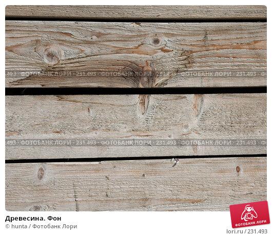 Древесина. Фон, фото № 231493, снято 23 марта 2008 г. (c) hunta / Фотобанк Лори