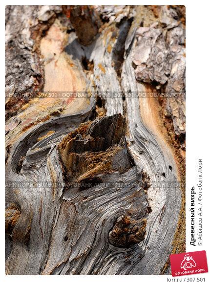 Древесный вихрь, фото № 307501, снято 29 марта 2008 г. (c) Абышев А.А. / Фотобанк Лори