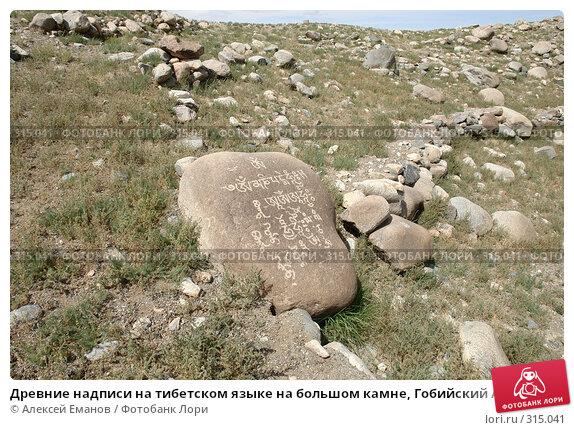 Древние надписи на тибетском языке на большом камне, Гобийский Алтай, Монголия, фото № 315041, снято 4 августа 2007 г. (c) Алексей Еманов / Фотобанк Лори