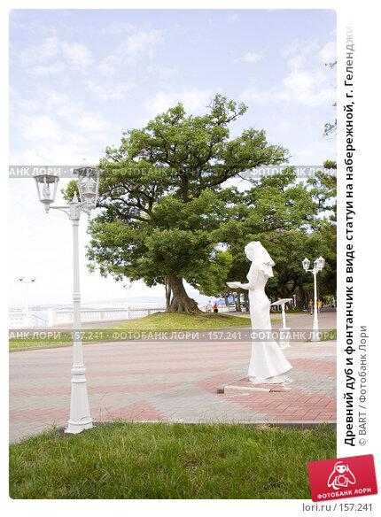 Древний дуб и фонтанчик в виде статуи на набережной, г. Геленджик, фото № 157241, снято 24 июля 2017 г. (c) BART / Фотобанк Лори