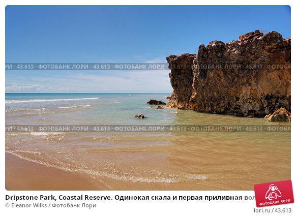 Dripstone Park, Coastal Reserve. Одинокая скала и первая приливная волна на коралловом песке., фото № 43613, снято 13 мая 2007 г. (c) Eleanor Wilks / Фотобанк Лори
