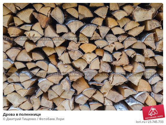 Купить «Дрова в поленнице», фото № 23745733, снято 7 сентября 2016 г. (c) Дмитрий Тищенко / Фотобанк Лори