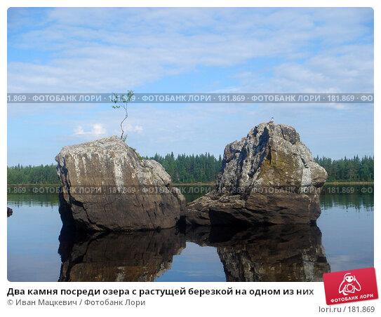 Два камня посреди озера с растущей березкой на одном из них, фото № 181869, снято 16 июля 2005 г. (c) Иван Мацкевич / Фотобанк Лори
