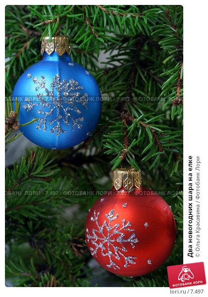 Два новогодних шара на елке, фото № 7497, снято 23 августа 2006 г. (c) Ольга Красавина / Фотобанк Лори