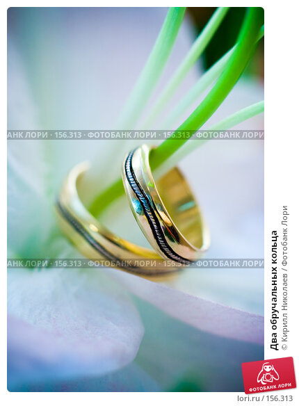 Два обручальных кольца, фото № 156313, снято 7 сентября 2007 г. (c) Кирилл Николаев / Фотобанк Лори