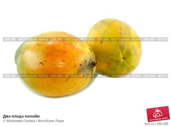 Купить «Два плода папайи», фото № 250205, снято 13 октября 2007 г. (c) Моисеева Галина / Фотобанк Лори