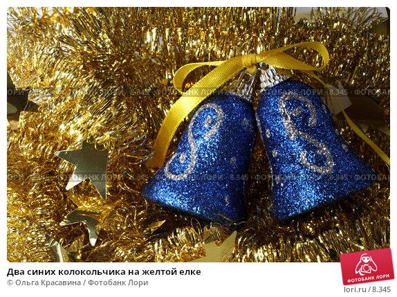 Два синих колокольчика на желтой елке, фото № 8345, снято 3 сентября 2006 г. (c) Ольга Красавина / Фотобанк Лори