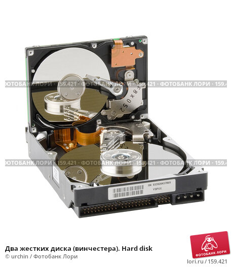 Два жестких диска (винчестера). Hard disk, фото № 159421, снято 21 декабря 2007 г. (c) urchin / Фотобанк Лори