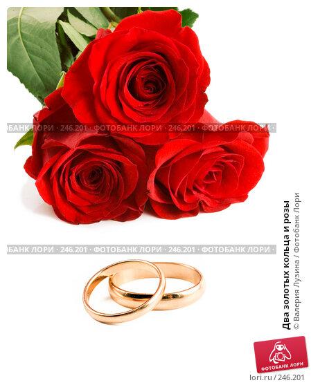 Два золотых кольца и розы, фото № 246201, снято 1 марта 2008 г. (c) Валерия Потапова / Фотобанк Лори