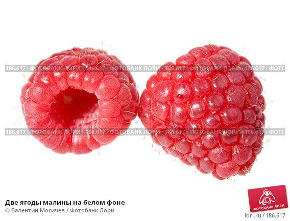 Две ягоды малины на белом фоне, фото № 186617, снято 20 января 2008 г. (c) Валентин Мосичев / Фотобанк Лори
