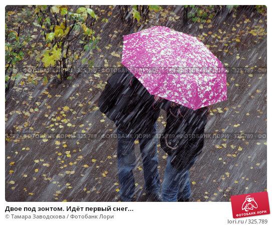 Купить «Двое под зонтом. Идёт первый снег...», эксклюзивное фото № 325789, снято 14 октября 2007 г. (c) Тамара Заводскова / Фотобанк Лори