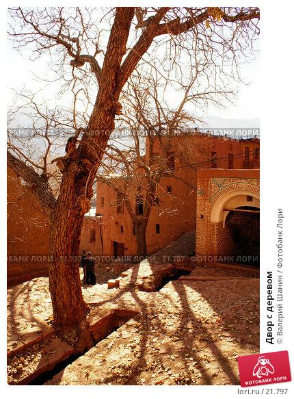 Двор с деревом, фото № 21797, снято 23 ноября 2006 г. (c) Валерий Шанин / Фотобанк Лори