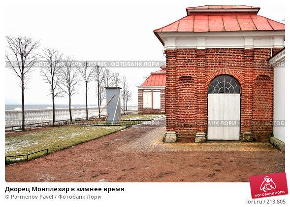 Дворец Монплезир в зимнее время, фото № 213805, снято 13 февраля 2008 г. (c) Parmenov Pavel / Фотобанк Лори