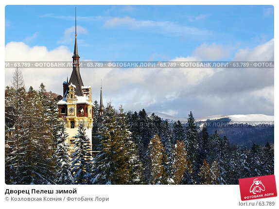 Дворец Пелеш зимой, фото № 63789, снято 5 января 2007 г. (c) Козловская Ксения / Фотобанк Лори