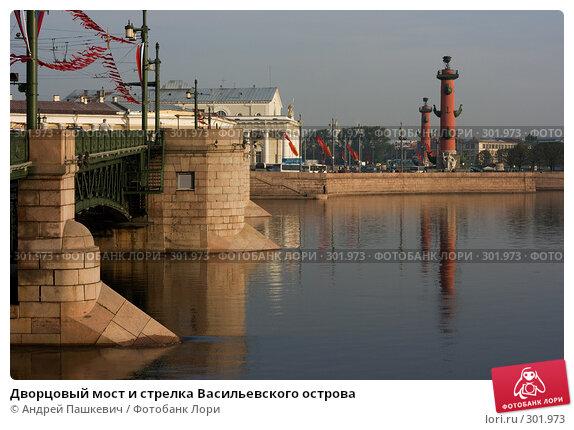 Дворцовый мост и стрелка Васильевского острова, фото № 301973, снято 8 мая 2008 г. (c) Андрей Пашкевич / Фотобанк Лори