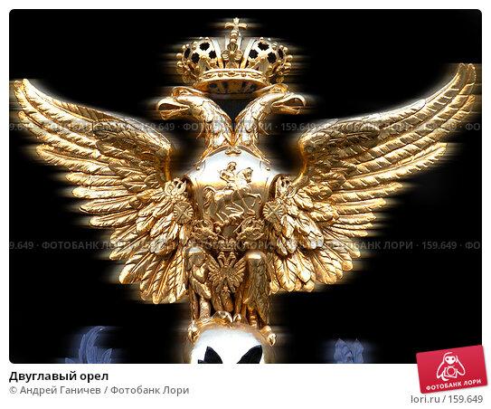 Двуглавый орел, фото № 159649, снято 24 сентября 2017 г. (c) Андрей Ганичев / Фотобанк Лори