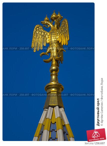 Купить «Двуглавый орел», фото № 258697, снято 28 мая 2006 г. (c) Артём Сапегин / Фотобанк Лори