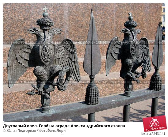 Двуглавый орел. Герб на ограде Александрийского столпа, фото № 243141, снято 5 апреля 2008 г. (c) Юлия Селезнева / Фотобанк Лори