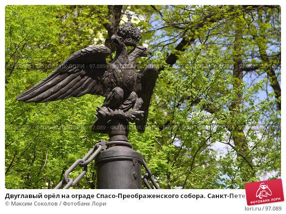 Двуглавый орёл на ограде Спасо-Преображенского собора. Санкт-Петербург, фото № 97089, снято 19 мая 2007 г. (c) Максим Соколов / Фотобанк Лори